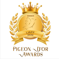 Pigeon D'Or Awards